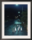 Black Footed Jackass Penguins Walking Along Road at Night, Boulders, South Africa Prints by Inaki Relanzon