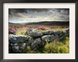 Dry Stone Wall, Near Birch Tor, Dartmoor Np, Devon. September 2008 Poster by Ross Hoddinott
