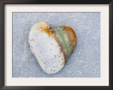 Heart-Shaped Pebble, Scotland, UK Posters by Niall Benvie