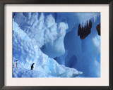Two Adelie Penguins on Iceberg, Antarctica Prints by Edwin Giesbers