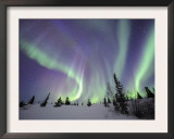Northern Lights Northwest Territories, March 2008, Canada Prints by Eric Baccega