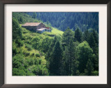 Old Farmhouse on Steep Hillside in Tregura, Ripolles, Catalonia. Pyrenees, Spain Print by Inaki Relanzon
