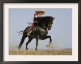 Charro on a Black Andalusian Stallion Galloping in Ojai, California, USA Print by Carol Walker
