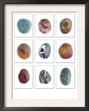 Collection of Smooth Pebbles from Auchmithie Beach, Angus, Scotland, UK Prints by Niall Benvie
