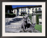 Two Russian Blue Cats Sunning on Garden Stone Steps, Italy Prints by Adriano Bacchella
