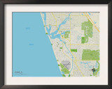 Political Map of Venice, FL Art