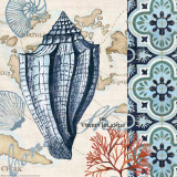 Trade Wind Conch Art by Jennifer Brinley