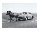 Pony Pulling Volkswagon, France Poster