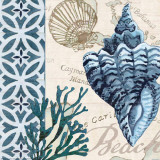 Trade Wind Whelk Posters by Jennifer Brinley