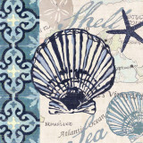 Trade Wind Scallop Prints by Jennifer Brinley