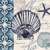Trade Wind Scallop Prints by Jennifer Brinley