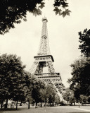 Torre Eiffel I Poster di Amy Melious