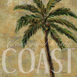Coastal Palm Poster by Todd Williams