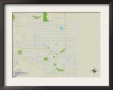 Political Map of Lehigh Acres, FL Prints