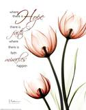 Hope Tulips Red Posters by Albert Koetsier