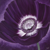 Purple Passion II Print by Kaye Lake