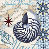 Trade Wind Nautilus Prints by Jennifer Brinley
