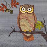 Awesome Owls II Poster van Paul Brent