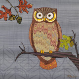 Awesome Owls II Prints by Paul Brent