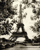 Eiffle Tower II Poster by Amy Melious