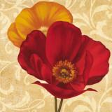 Poppies I Art by Jordan Gray