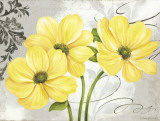 Colori Yellow I Affiches par Pamela Gladding