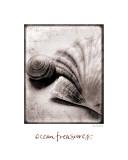 Trésors de l'océan Affiches par Sue Schlabach