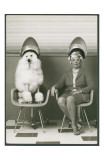 Coneheads Lady and Poodle in Dryers, France Psters