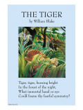 The Tiger Láminas por William Blake