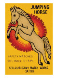 Jumping Horse Safety Matches Posters