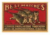 Three Tiger - Best Matches Prints