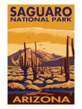 Saguaro National Park, Arizona Plakat af  Lantern Press