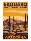 Saguaro National Park, Arizona Print by  Lantern Press
