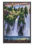 Burney Falls, California Scene Poster
