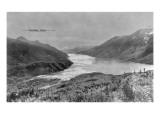 Alaska - View of Lynn Canal Art by  Lantern Press