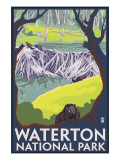 Waterton National Park, Canada - Beaver Family Posters af Lantern Press