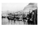 Ketchikan, Alaska - View of Trolling Boats in Harbor Art by  Lantern Press