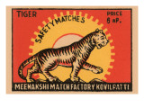 Tiger Safety Matches Photo