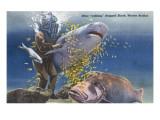 Marineland, Florida - Diver Moving Drugged Shark at Marine Studios Affiches
