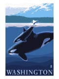 Orca and Calf - Washington Print by  Lantern Press