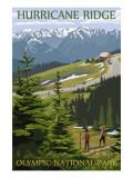 Hurricane Ridge, Olympic National Park, Washington Poster af  Lantern Press