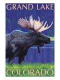 Grand Lake, Colorado - Moose at Night Kunst af  Lantern Press