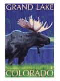 Grand Lake, Colorado - Moose at Night Art by  Lantern Press