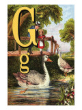 G For the Goose That Swims In the Pond Prints by Edmund Evans