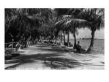 Miami, Florida - Bayfront Park Promanade Scene Poster von  Lantern Press
