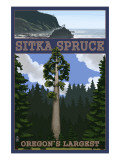 Sitka Spruce - Oregon's Largest - Oregon Coast Prints by  Lantern Press