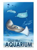 Rays - Visit the Aquarium Posters by  Lantern Press