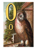 O For the Owl That Sees In the Dark Prints by Edmund Evans