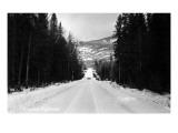 Alaska - Alaska Highway Scene Posters by  Lantern Press