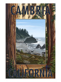 Cambria, California - Redwoods & Coast Scene Art